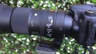 getlinkyoutube.com-Sigma 150-600mm F5-6.3 DG OS HSM Contemporary Review
