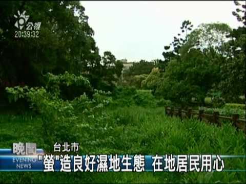【非凡新聞】復育螢火蟲!北市榮星花園成新家