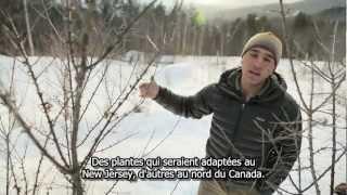 getlinkyoutube.com-Permaculture, auto-suffisance et chauffage au compost dans les collines du Vermont - Possible.org