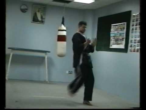 Okinawa-Te  Karate-do eleventh video