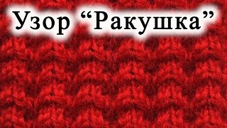 "getlinkyoutube.com-Вязание спицами.  Узор ""Ракушка"""