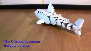 getlinkyoutube.com-The shark hunting fish - Lego Robot