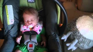 getlinkyoutube.com-Day in the Life of reborn baby Zoe!