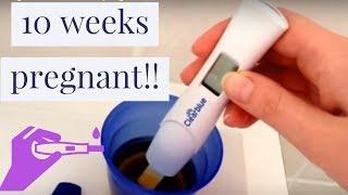 getlinkyoutube.com-Clearblue digital at 10 weeks pregnant!