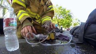 Пожарникар спасува маче!