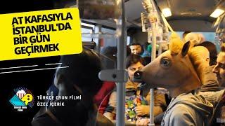 getlinkyoutube.com-At Kafasıyla Bir Gün Geçirmek