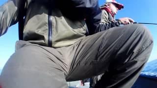 getlinkyoutube.com-Proanglers Напарник Красавчег