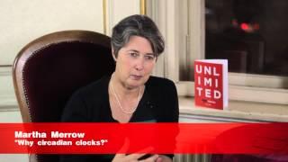 Speaker Quotes - Women In Academia