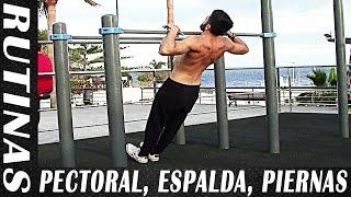 3 Rutinas para Cada Grupo Muscular - Pectoral y Tríceps, Espalda y Bíceps, Pierna