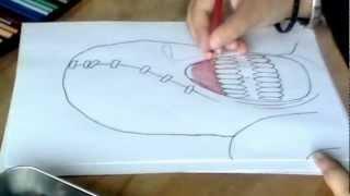 getlinkyoutube.com-Dibujando a Nemesis - [RESIDENT EVIL]