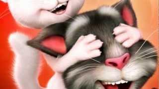 getlinkyoutube.com-Tom cat Angela love together forever