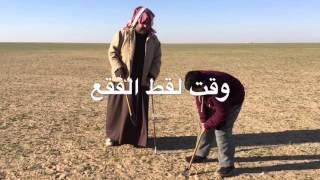 getlinkyoutube.com-اسامه القصار كشتة ولقط فقع في بر السعوديه مع دوانية العون يوم الخميس والجمعه والسبت و ٢٠ و٢١- ٢-٢٠١٦