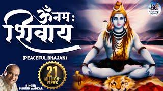 getlinkyoutube.com-Om Namaha Shivaya (Peaceful Bhajan)
