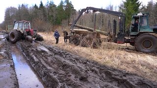 Forwarder Kockums pulls Belarus Mtz 892 forestry tractor, wet conditions, difficult road