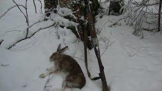 getlinkyoutube.com-Охота на зайца с гончими 14.10.13 - Hunting the hare with dogs 14.10.13