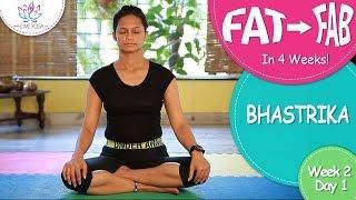 getlinkyoutube.com-Lose Weight In 4 Weeks || Week 2 - Day 1 || Bhastrika