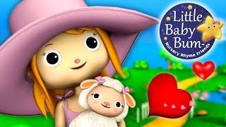 Mary Had A Little Lamb   Nursery Rhymes   By LittleBabyBum!