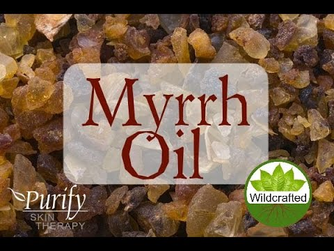 Myrrh Essential Oil, All You Ever Need To Know