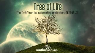 getlinkyoutube.com-audiomachine - The Truth