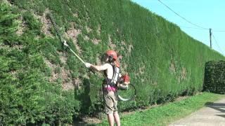 getlinkyoutube.com-Time Lapse - Hedge Trimmer