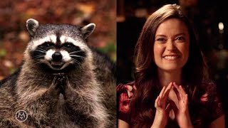 Summer Glau Imitates Popular Animal Memes – Speakeasy
