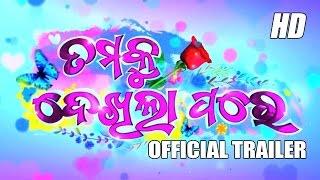 Tamaku Dekhila Pare Odia Movie HD Official Trailer width=