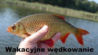 getlinkyoutube.com-Wakacyjne wzdręgi -  2015