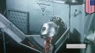 Pria terjatuh ke dalam blender daging dalam kecelakaan mengerikan - TomoNews