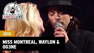 getlinkyoutube.com-Love You More - Miss Montreal, Waylon, O'G3NE (De Vrienden van Amstel LIVE! 2015)