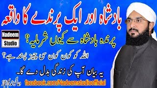 Hafiz imran aasi - Badsha or Ek Parinda Ka Waqia new 2018