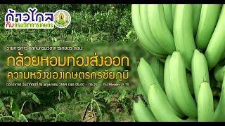 getlinkyoutube.com-กล้วยหอมทองส่งออก...ความหวังของเกษตรกรชัยภูมิ