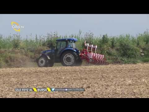 Danelik Mısır Ekimi / Çiftçi TV