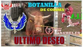 QUE PORRAZO SEÑORES //BOTANILLA DE COLIMA VS ÚLTIMO DESEO//DE RANCHO LOS LAURELES LOS TOROS DIVINOS