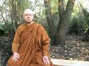 Ajahn Brahm on Politics
