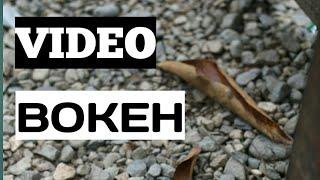 VIDEO BOKEH.....