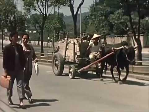 1959年的臺灣社會 Part I