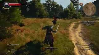 getlinkyoutube.com-The Witcher 3: Wild Hunt   PC   test ShadowPlay   Palit GeForce GTX 970
