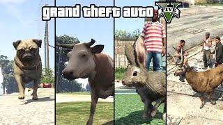 getlinkyoutube.com-GTA 5 - Play as an Animal (Dog, Cat, Cow, Boar, Rabbit, Deer & more) [PS4 & Xbox One]