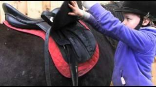 getlinkyoutube.com-Crafty Ponies! How to lead, groom & tack up! www.craftyponies.co.uk