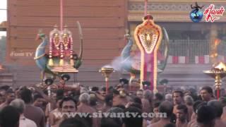 நல்லூர் கந்தசுவாமி கோவில் 4ம் திருவிழா 31.07.2017