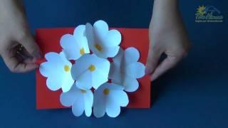 getlinkyoutube.com-THE HOUSE PIRACICABA - 3D Flower Pop Up Card