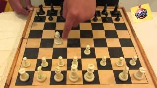 getlinkyoutube.com-تعلم كيف تلعب الشطرنج للمبتدئين من الصفر حتى الاحتراف