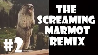 getlinkyoutube.com-The Screaming Marmot - Remix Compilation #2