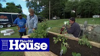 getlinkyoutube.com-How to Plant a Raised Garden Bed - This Old House