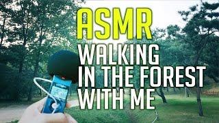 getlinkyoutube.com-No Talking ASMR : 톰왔 등에 업혀 도심숲길 산책하기 walking in the forest  (Binaural)