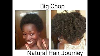 getlinkyoutube.com-Big Chop. Natural Hair Journey 2015