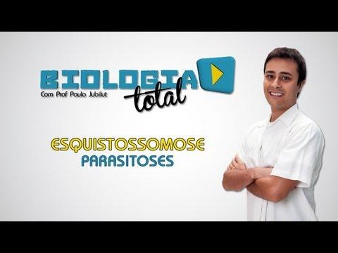 Esquistossomose - Parasitoses - Prof. Paulo Jubilut