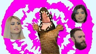 التمساح الحلقة ٨٥: البلانية المهندقريسية  | Temsa7LY