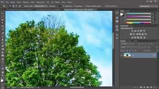 getlinkyoutube.com-Adobe Photoshop - jak wyciąć drzewo?