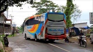 getlinkyoutube.com-LAIN DARI YANG LAIN! Ada yang beda dari Bus Rosalia Indah Ini?